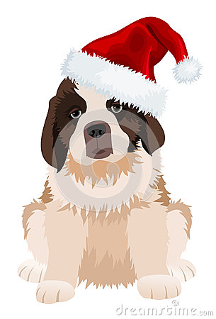 St Bernard puppy in Christmas hat.