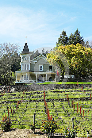 St. Clement Vineyards in Napa Valley Editorial Photography