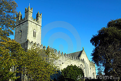 St. Mary s Cathedral Limerick City Ireland