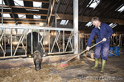 Stable cleaning