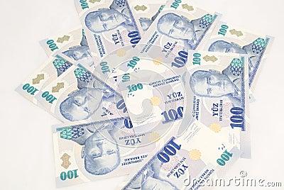 Stack of 100 YTL bills
