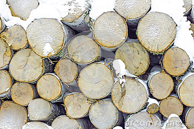 Stack of birch wood