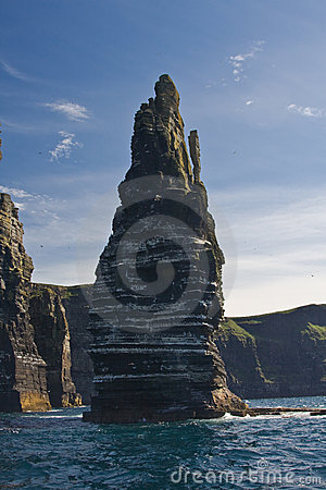 Stack at the Cliffs of Moher