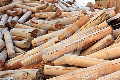 Stack of Logs