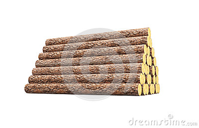 Stack of pine logs