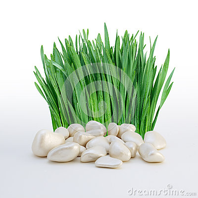 Stack of stones and grass