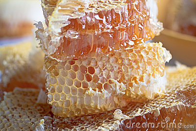 Stacked honey comb