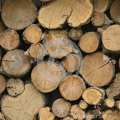 Free Stacked Logs Royalty Free Stock Image - 65684616