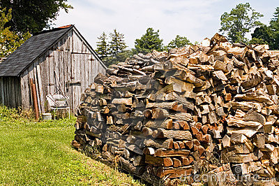 Stacked Pile of Firewood