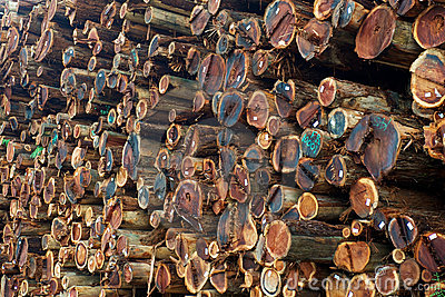 Stacked Redwood Lumber Stock Image - Image: 17043561