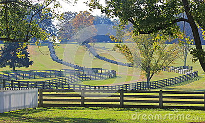 Stacked Split-Rail Fences in Appomattox, Virginia