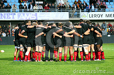 Stade Toulousain s team illustration Editorial Stock Photo