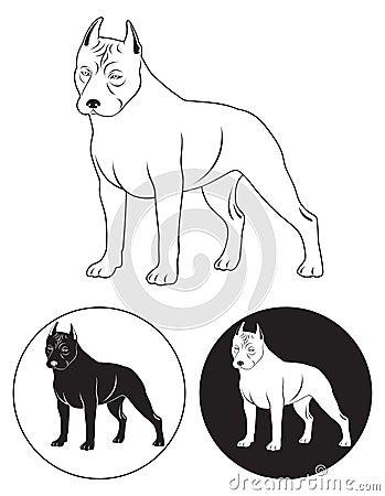 Staffordshire Terrier