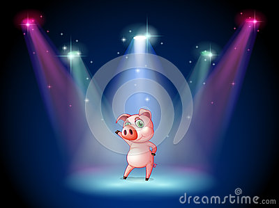 A stage with a pig at the center