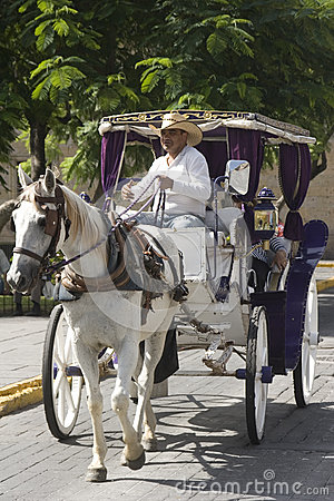 Stagecoach in Guadalajara Editorial Image
