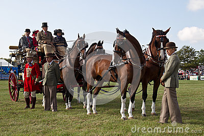 Stagecoach and horses Editorial Photography