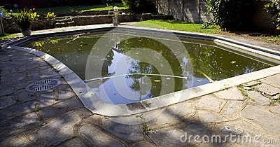 Stagnant Water Stock Image Image 32744111