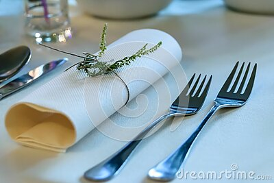 Stainless Steel Fork Beside Rolled Paper Towel With Parsley On Top Free Public Domain Cc0 Image
