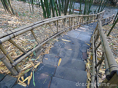 Stairs in the bamboo forest