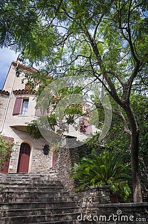 Stairs passage under Mimosa tree at Bormes les mimosas
