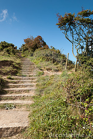 Stairs in Port Isaac