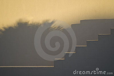 Stairs and shadows at sunset