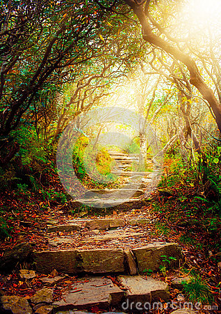 Free Stairs With Sun Beams Stock Photography - 27054832