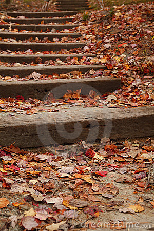 Stairway covered with fallen leaves