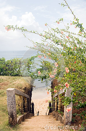 Stairway entry to sandy beach  flowers Caribbean Sea Little Corn
