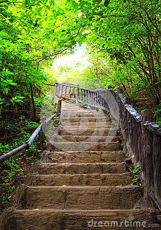 Free Stairway To Forest, Erawan National Park, Kanchanbur, Thailand Stock Photo - 36937860
