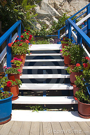 Stairways with flowers