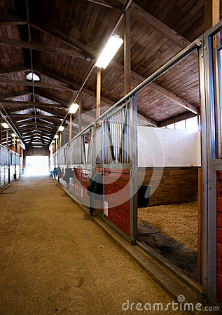 Free Stall Center Path Horse Paddack Equestrian Stable Royalty Free Stock Photo - 43986255