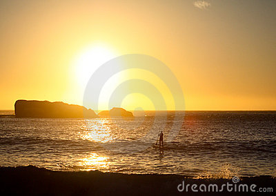 Stand Up Paddle Sufer In Front Of Sunset