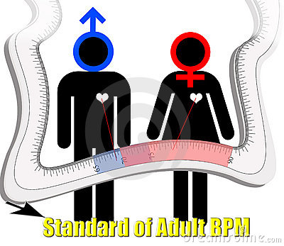 Standard of adult beat per minute