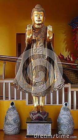 Standing myanmar buddha.