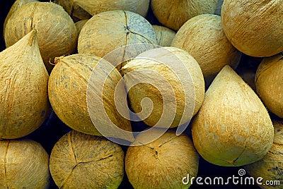 Stapel Kokosnüsse