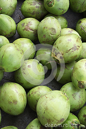 Stapel von frischen grünen Kokosnüssen