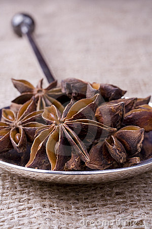 Star Anise on Silver Spoon