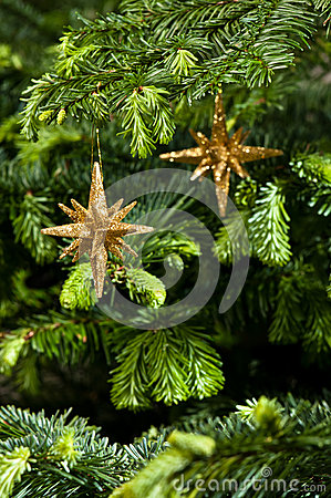 Free Star Shape Christmas Ornament In Gold Stock Photo - 25383760