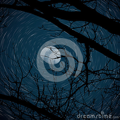 Free Star Trail With 3/4 Moon Stock Images - 89612484