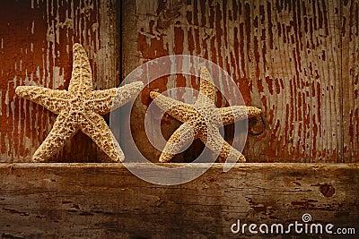 Starfish on barn door