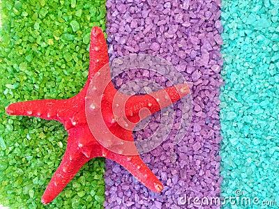 Starfish on bath salt