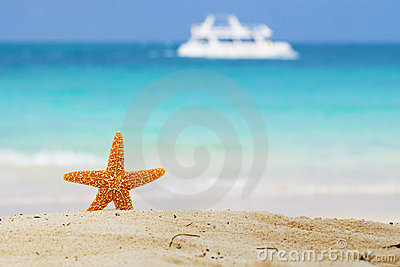 Starfish on beach, blue sea and white boat