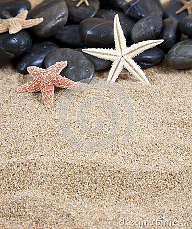 Starfish black stones and sand