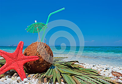 Starfish and coconut