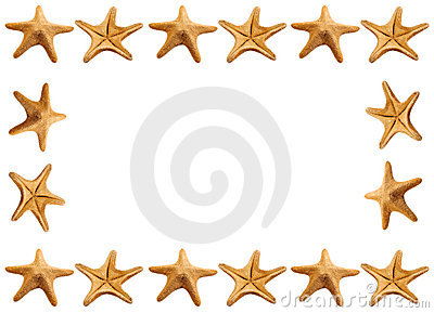Starfish Frame Royalty Free Stock Photography - Image: 8118917