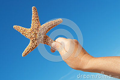 Starfish in his hand