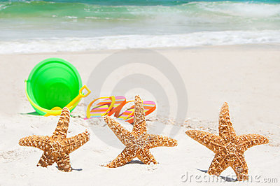 Starfish on holiday