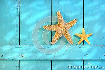 Starfish on an old rustic door