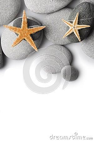 Starfish on Pebbles